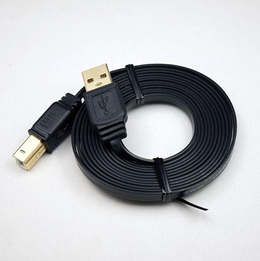 Câble USB2.0 type B vers type A plat en 2m ZWO