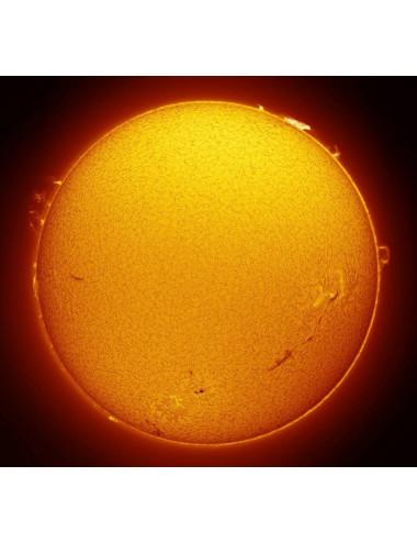 Filtre solaire H-alpha LUNT LS50FHa/B600d2