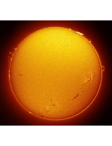 Filtre solaire H-alpha Lunt LS50FHa/B600d1
