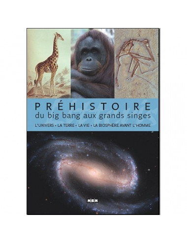 Du Big Bang aux grands singes